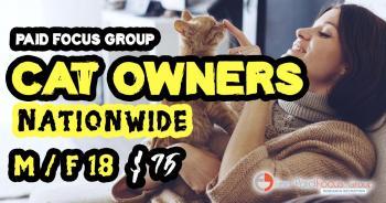 Cat Owner Focus group